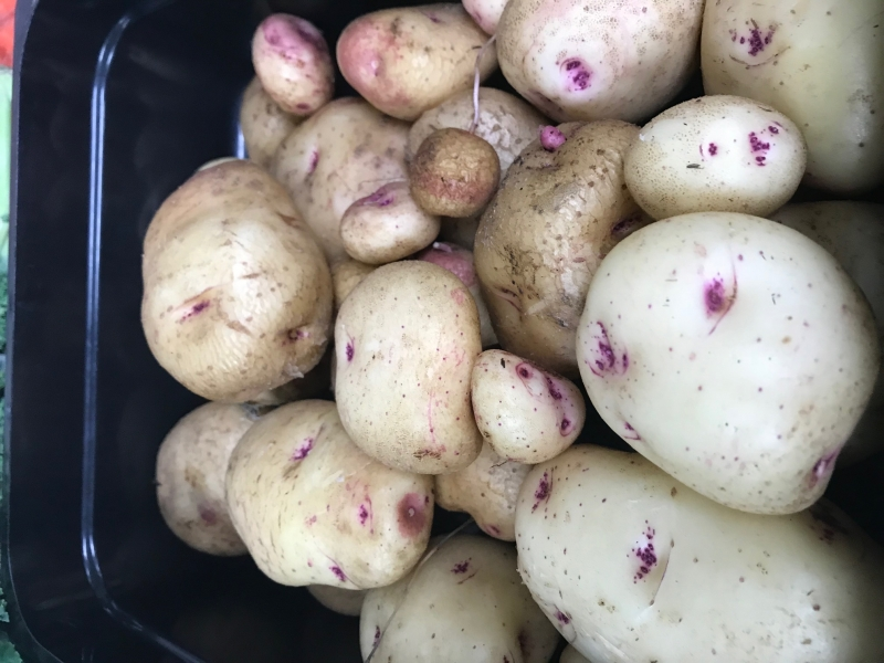 HS Garden Grown Potatoes