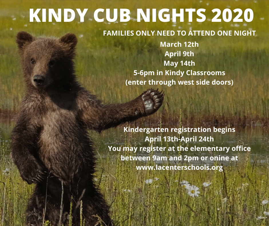 Kindy Cub Night Advertisement